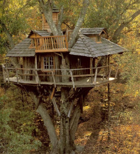 tree-house-wood-classic1