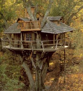 tree-house-wood-classic1