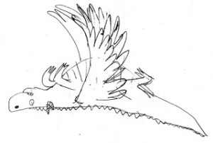 ROAR.sketch4